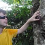 Gab et le cacaotier