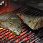 Le poisson sur le BBQ